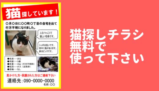 猫が家出した!迷子猫チラシテンプレート無料で使って下さい!