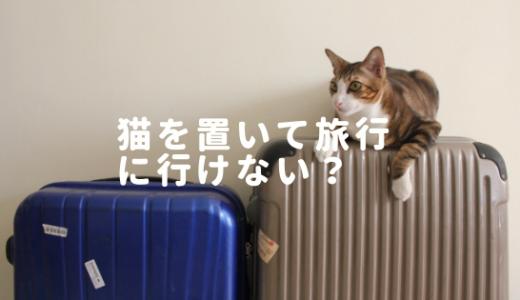 猫がいるから旅行に行けない?留守番は大丈夫?餌問題も解決!