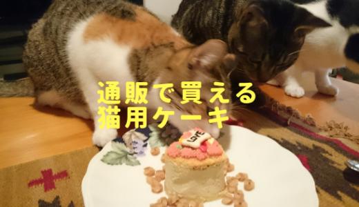 猫用で可愛い!手作りケーキ屋さんの通販サイトまとめ